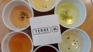 Tekoe1