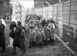 exposición itinerante Auschwitz en Madrid